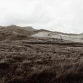Mull Tidal Flats by Jan W Faul