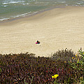 Natanya Beach by Daniel Blatt