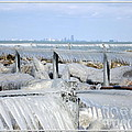Natures Ice Sculptures 12 by Rose Santuci-Sofranko