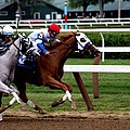 Neck And Neck At Saratoga One by Joshua House