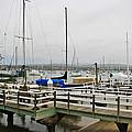 Newport Bay And Balboa Island by Heidi Smith