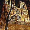 Notre Dame De Paris by Elena Elisseeva