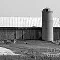 Old Barn And Silo by Pamela Walrath