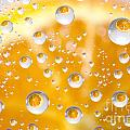 Orange Water Drops by Mats Silvan