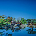 Osaka Garden Pond by Jonah Anderson