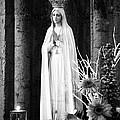 Our Lady Of Fatima by Gaspar Avila