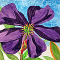 Our Very Bold Tibouchina by Debi Singer