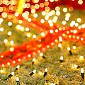 Outdoor Christmas Decorations by Gaspar Avila