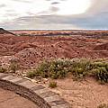 Painted Desert 1 by Susan OBrien
