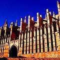 Palma Cathedral by Iris Vanessa Hood