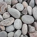 Pebbles On Beach by Ted Kinsman