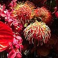 Philadelphia Flower Show by Katie Cupcakes