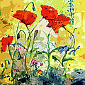 Poppies Provencale by Ginette Callaway