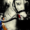 Portrait Of A Carousel Pony by Colleen Kammerer
