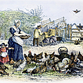Poultry Yard, 1847 by Granger