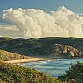 Praia Do Amado by Colette Panaioti