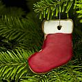 Present Sock Shape Short Bread Cookie In Christmas Tree by U Schade