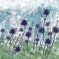 Purple Puffs by Debbie Portwood