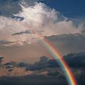 Rainbow by Phil Jude