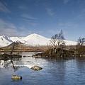 Rannoch Moor - Winter by Pat Speirs