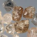 Raw Diamonds by Ted Kinsman