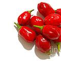 Red Peppers by Gaspar Avila
