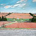 Red Soil On Prince Edward Island by Stella Sherman