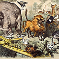 Republican Elephant, 1874 by Granger
