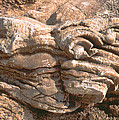 Rock Abstract by Daniel Blatt