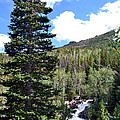 Rocky Mountain National Park2 by Zawhaus Photography
