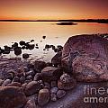 Rocky Shore At Twilight by Oleksiy Maksymenko