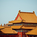 Roof Of Forbidden City by Pan Hong