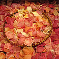 Rose Petals by Dave Mills