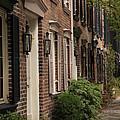 Savannah 3 by Carol Ann Thomas