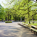 Saxon Garden In Warsaw by Artur Bogacki