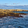 Schoodic Point Acadia National Park by Glenn Gordon
