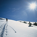 Scott Cooper Backcountry Skiing by Bill Hatcher