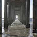 Scripps Pier La Jolla California 5 by Bob Christopher
