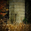 Silo by Michael L Kimble