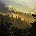Smoky Mountains by Ron Sloan