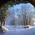 Snow Through The Bridge by Ed Lukas