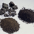Soil Samples by Sheila Terry