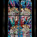 Stained Glass Pc 05 by Thomas Woolworth