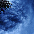 Storm Clouds by HD Connelly