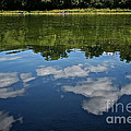 Summer's Reflections by Susan Herber