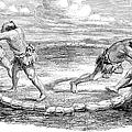 Sumo Wrestling, 1853 by Granger