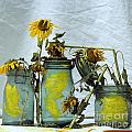 Sunflowers .helianthus Annuus by Bernard Jaubert