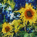 Sunflowers by Michelle Calkins