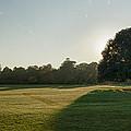 Sunrise In The Park by Vinicios De Moura