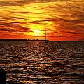 Sunset Xxxii by Joe Faherty